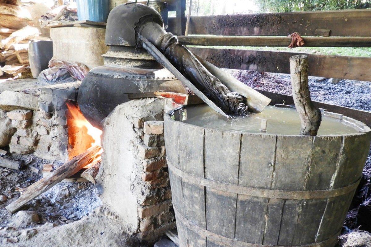 A tradição da graspa mantida em Protásio Alves